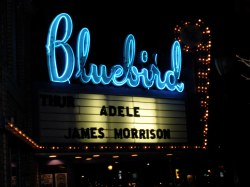 Adele Marquee