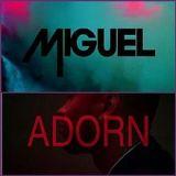 Miguel Adorn